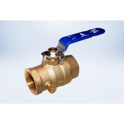 "1/2"" Ball Valve Waste & Cap FIP - Lead Free"